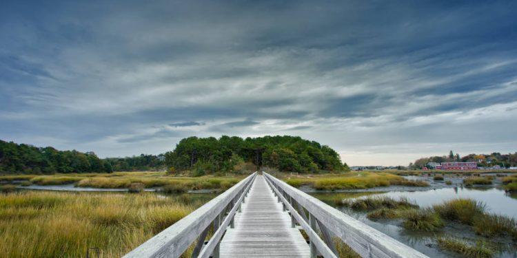Wellfleet, Tims bridge. FREE Cape Cod News.