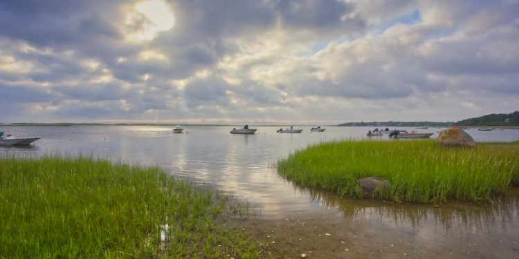 Cape Cod Weather Forecast August 12, 2020 - Orleans, Massachusetts