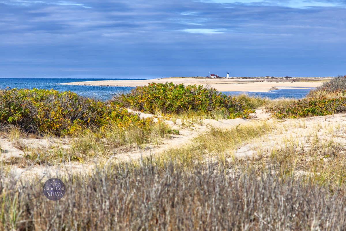 Top Ten Cape Cod Beaches by FreeCapeCodNews Herring Cove Beach Provincetown