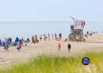 Nauset beach shark sighting Cape Cod News